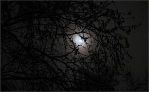 In The Early Hour ~ CHRISTian poetry by deborah ann