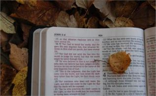 Daily Bread ~ CHRISTian poetry by deborah ann