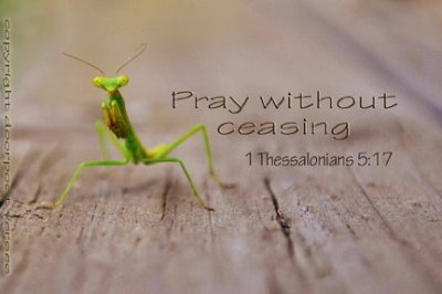 Pray Without Ceasing ~ CHRISTian poetryby deborah ann