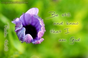 Be Still used with permission Doorpost Verses on Facebook 2