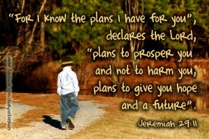 God Plans  for You used with permission Doorpost Verses on Facebook