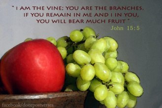 I am the Vine used with premission from Doorpost Verses on Facebook