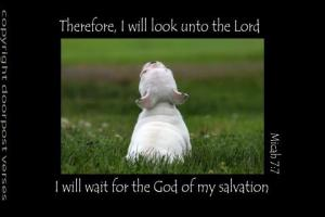 I Will Wait for the Lord used with permission Doorpost Verses on Facebook