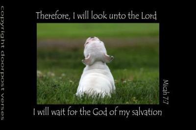 I Will Wait ~ CHRISTian poetry by deborah ann