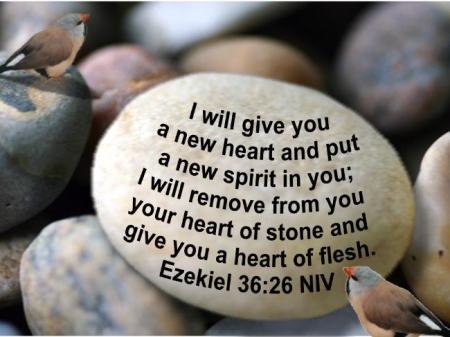Heart of Stone used with permission forgodsglorybibleversepictures