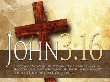 John 3.16 IBible Verses