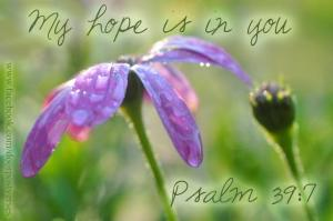 My Hope is In You used with permission DoorPost Verses on Facebook