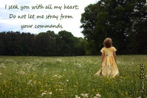 Seek With All My Heart used with permission DoorPost Verses on Facebook