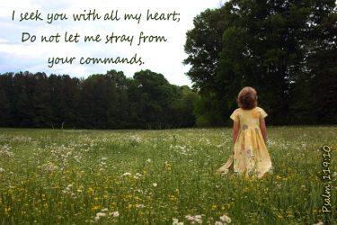 My Heart's Desires ~ CHRISTian poetry by deborah ann