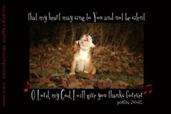 Sing Your Praise ~ CHRISTian poetry by deborah ann
