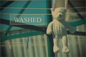 Washed by Marian Trinidad free photo #8199