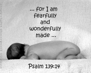 Fearfully and Wonderfully Made used with permission Doorpost Verses on Facebook
