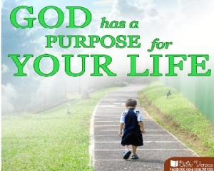 God Has A Purpose used with permission IBible Verses