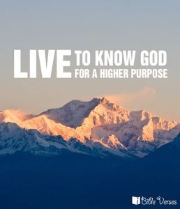 Live to Know God used with permission IBible Verses