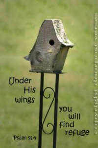Under His Wings Refuge used with permission Doorpost Verses on Facebook