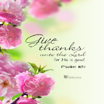 give-thanks-unto-the-lord_500 used with permission IBible Verses