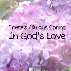 always-spring-in-gods-love used with permission IBible Verses