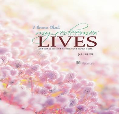 my-redeemer-livesC CHRISTian poetry by deborah ann