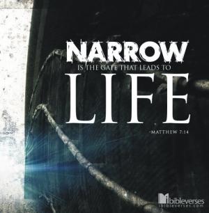 narrow-is-the-gate_CHRISTian poetry by deborah ann