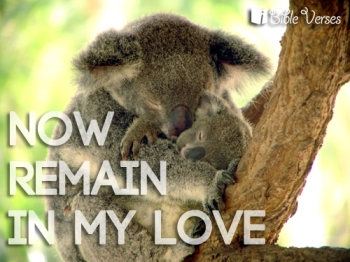 Love One Another ~ CHRISTian poetry by deborah ann ~
