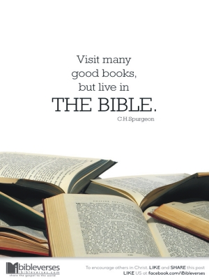 live-in-the-bible_CHRISTian poetry by deborah ann