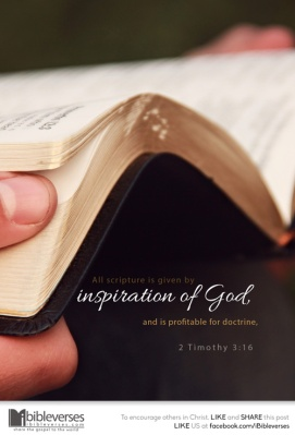 All Scriptures ~ CHRISTian poetry by deborahann ~ used with permission IBible Verses