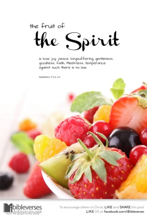 the-fruit-of-the-spirit ~ CHRISTian poetry by deborahann ~ used with permission IBible Verses