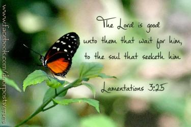 The Lord is Good ~CHRISTian poetry by deborahann ~ used with permission Doorpost Verses