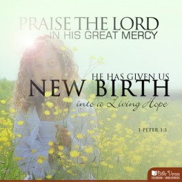 ~ CHRISTian poetry by deborahann ~ New Birth IBible Verses