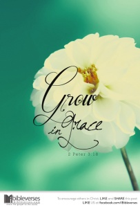 ~ CHRISTitan poetry by deborahann ~grow-in-grace 2 IBible Verses