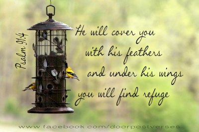 Under His WIngs used with permission Doorpost Verses on Facebook
