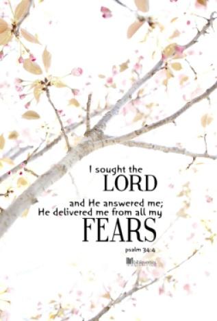 Make Fear Disappear ~ CHRISTian poetry by deborah ann