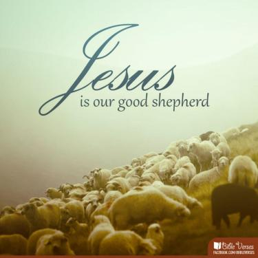 Even When ~ CHRISTian poetry by deborah annJesus is our Good Shepherd IBible Verses