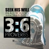 seek-his-will used with permission IBible Verses