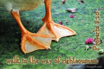 Walk in the Way ~ CHRISTian poetry by deborah ann ~ used with permission DoorPost Verses