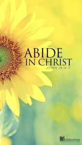Abiding in Jesus ~ CHRISTian poetry by deborah ann ~ Photo IBible Verses