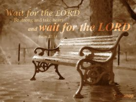 Wait, I say Wait ~ CHRISTian poetry by deborah ann