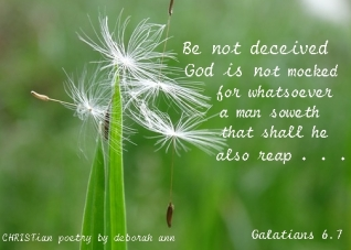 Sowing Good Seeds ~ CHRISTian poetry by deborah ann ~