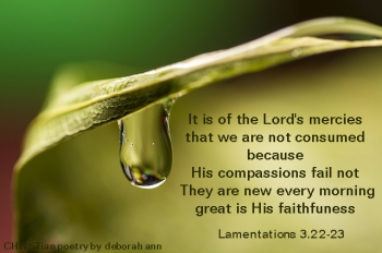 Sweet Drops of Mercy ~ CHRISTian poetry by deborah ann ~