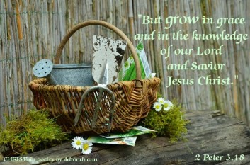 In The Garden of My Soul ~ CHRISTian poetry by deborah ann