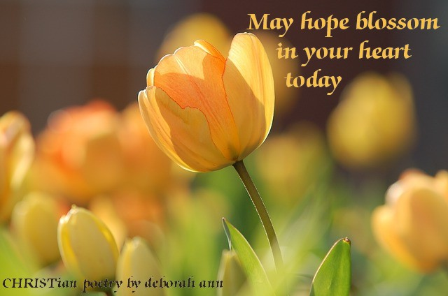 Spring's Hope ~ | CHRISTian poetry ~ by deborah ann
