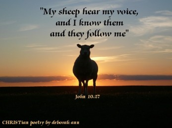 What My Sheep Know ~ CHRISTian poetry by deborah ann