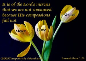 Today's Supply of Grace ~ CHRISTian poetry by deborah ann