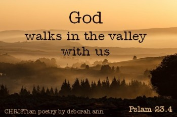 Don't Waste Your Valley ~ CHRISTYian poetry by deborah ann