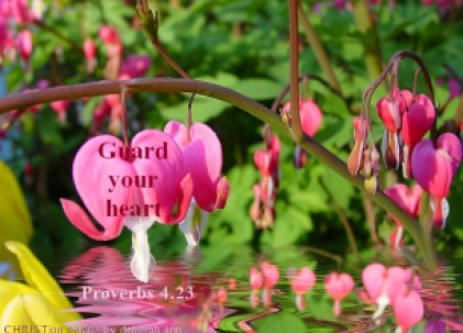 Guarding Our Hearts ~ CHRISTian poetry by deborah ann