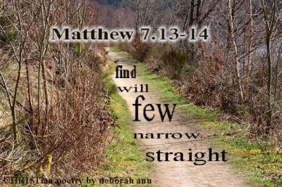 getting-through-the-narrow-gate-christian-poetry-by-deborah-ann-belka