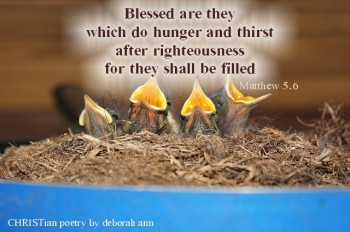 hungering-and-thristing-christian-poetry-by-deborah-ann-belka