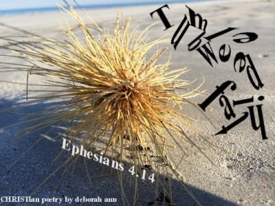 tumbleweed-faith-christian-poetry-by-deborah-ann
