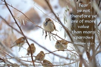 tattered-wings-and-all-christian-poetry-by-deborah-ann