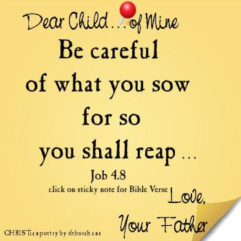 you reap what you sow bible